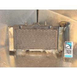 Radiador Venox 250 06