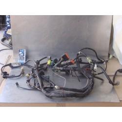 Cableado V-Strom 1000 05