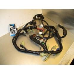 Cableado R6 5EB-82530-20