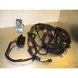 Cableado GSX 750 RW