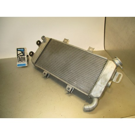 Radiador ER6 08