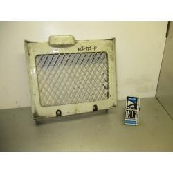Protector central radiador NS 125 F